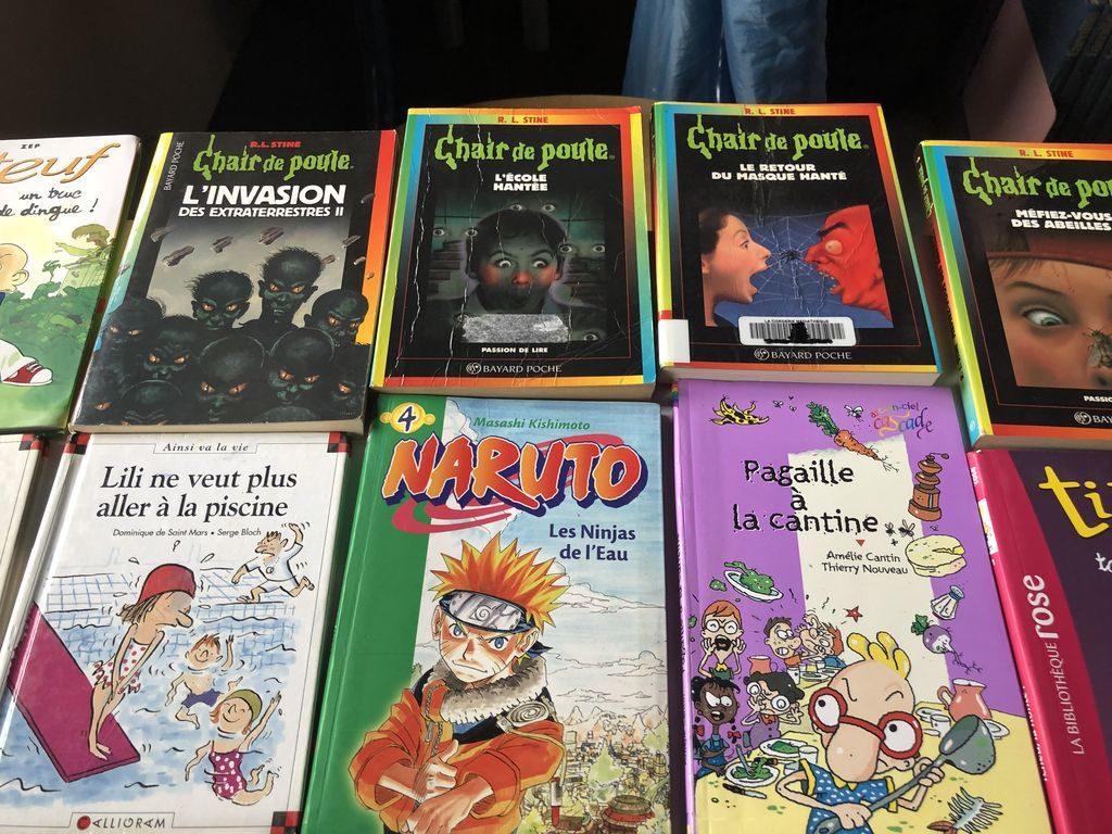 Biblio livres tombola (9)_small